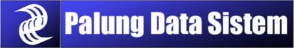 PT. PALUNG DATASYS